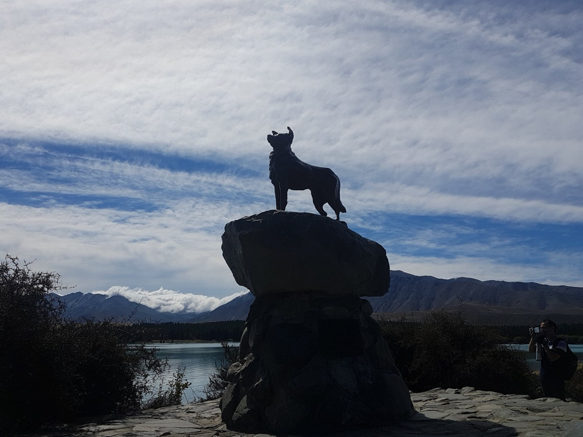 Moving on to Tekapo